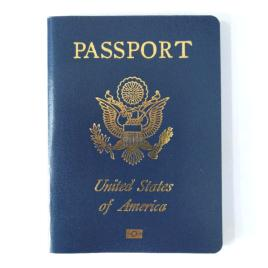 US 2000 Passport