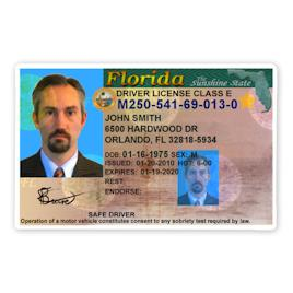 FL Drivers License (Modern)