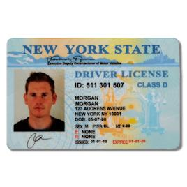 New York Drivers Licence